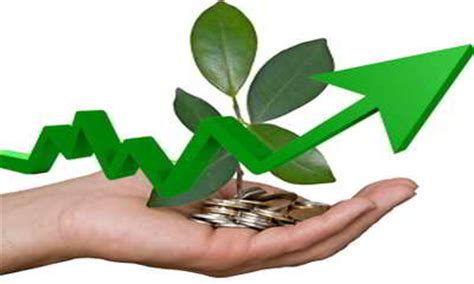 Introduction to a Green Economy: Concepts and Applications
